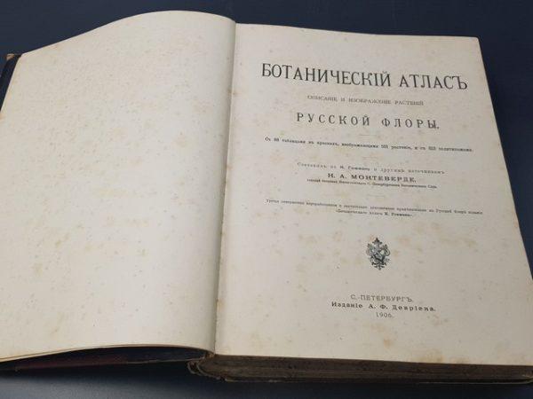 Монтеверде Н.А. Ботанический атлас: Описание и изображение растений русской флоры. Спб., 1906.